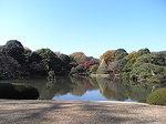 六義園玉藻の磯から眺めた池.JPG