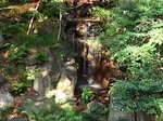 旧古河庭園内の大滝.JPG