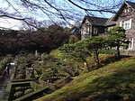 旧古河庭園内の洋風庭園イングリッシュガーデン2.JPG