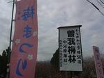 曽我梅林2013中河原会場入口1.JPG