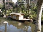根津美術館庭園池2.JPG
