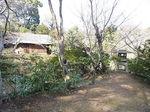 根津美術館日本庭園3.JPG