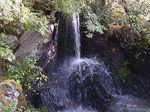 金閣寺龍門の滝と鯉名石.JPG