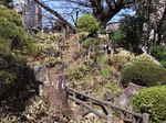 鳩森八幡神社富士塚正面階段.JPG