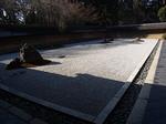 京都龍安寺の石庭1.JPG
