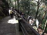 伊豆天城浄蓮の滝へ降りる階段.JPG