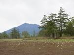 尾瀬湿原からの燧ケ岳2.JPG