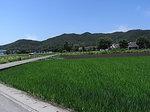忍野八海周辺の里山風景.JPG
