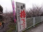 曽我梅林中河原会場入口2012-2.JPG