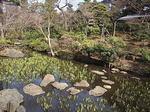 根津美術館日本庭園7.JPG