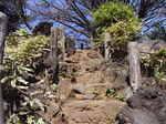 鳩森八幡神社富士塚正面階段頂上付近.JPG